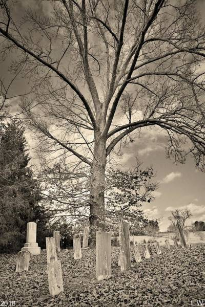 Photograph - Chapman Summers Cemetery Newberry Sc Vertical Black And White by Lisa Wooten