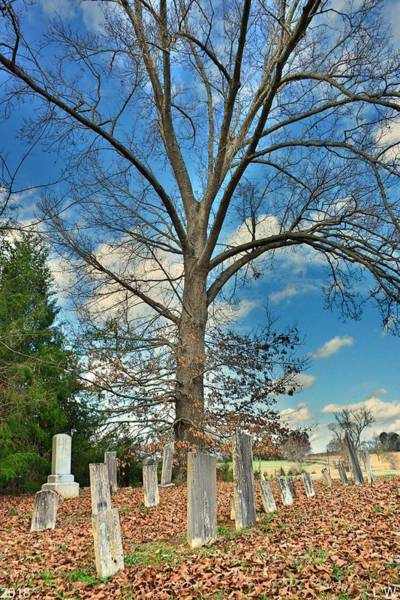 Photograph - Chapman Summers Cemetery Newberry Sc Vertical by Lisa Wooten