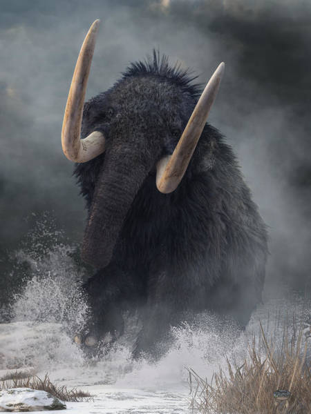 Photograph - Charging Mammoth by Daniel Eskridge