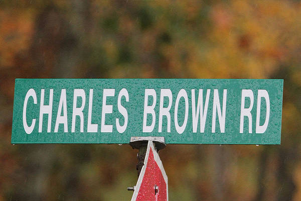 Photograph - Charles Brown Road by Ericamaxine Price