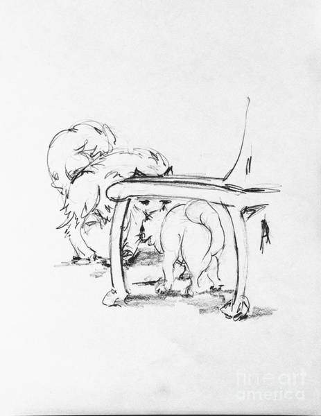 Hund Drawing - Charles Hiding Behind A Chair by Anthony Vandyk