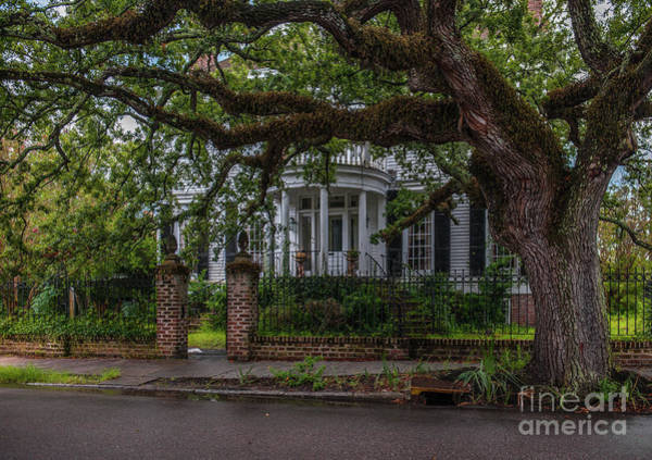 Photograph - Charleston After The Rain by Dale Powell