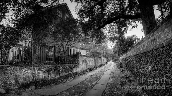 Charleston Ally Path Art Print