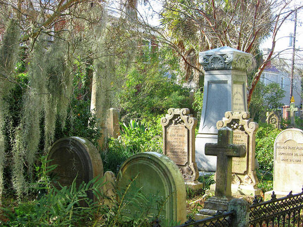 Photograph - Charleston Graveyard by Pat Moore