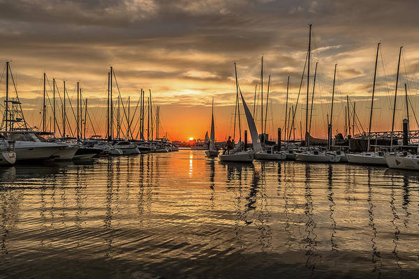 Photograph - Charleston Harbor Marina Sunset by Donnie Whitaker