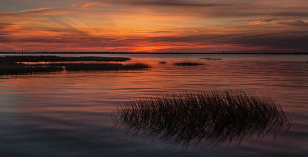 Photograph - Charleston Lowcountry At Dusk by Donnie Whitaker