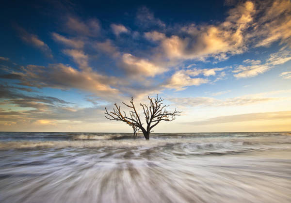 Sc Wall Art - Photograph - Charleston Sc Botany Bay Edisto Island - Alone by Dave Allen