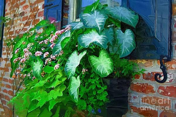 Photograph - Charleston Sc Flower Box by Donna Bentley