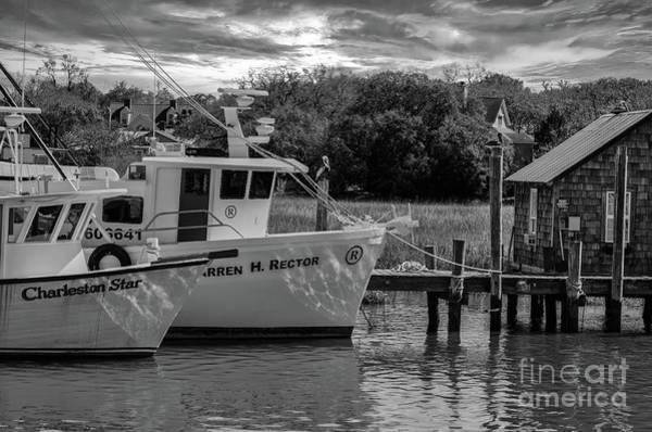 Photograph - Charleston Star In Monochrome by Dale Powell