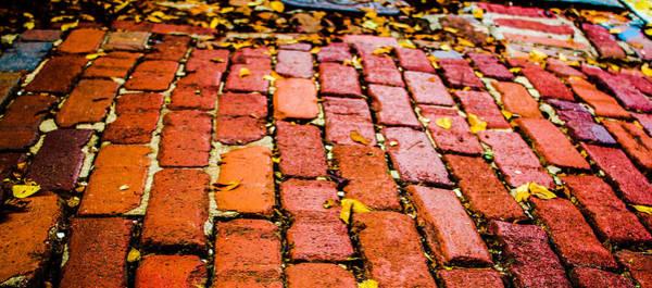 Photograph - Charleston Street by Stacey Rosebrock