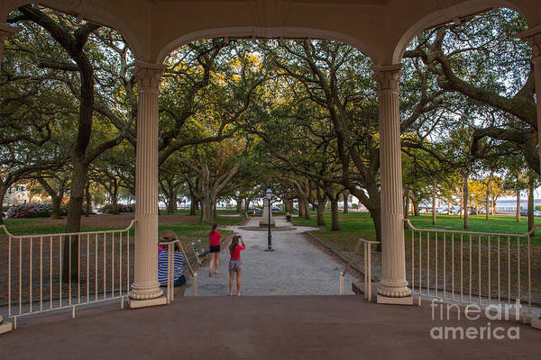 Photograph - Charleston Tourist by Dale Powell