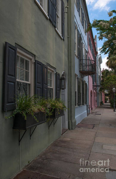 Photograph - Charleston Window Boxes On Rainbow Row by Dale Powell