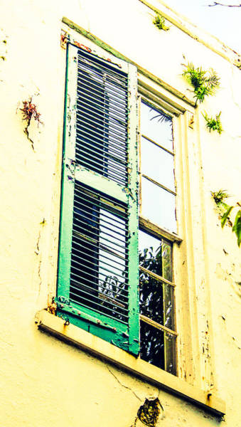 Photograph - Charleston Window by Stacey Rosebrock