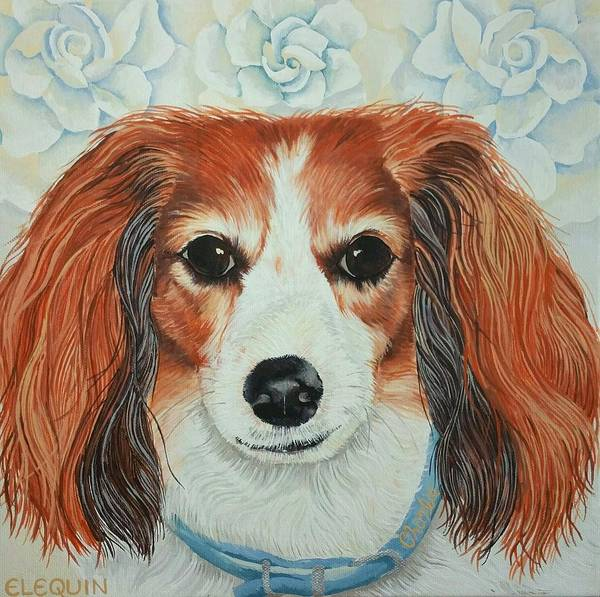 Wall Art - Painting - Charlie by Elizabeth Elequin