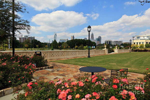 Photograph - Charlotte Midtown Park In Summer by Jill Lang