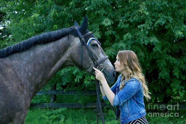 Photograph - Charlotte-phil-22 by Life With Horses