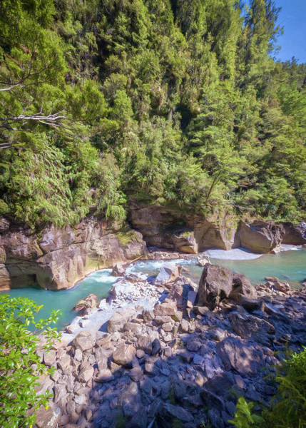 Photograph - Charming Creek Walkway New Zealand by Joan Carroll