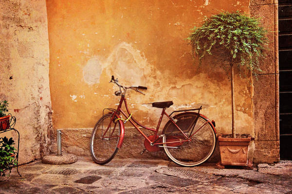 Photograph - Charming Lucca by Jill Love