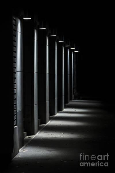 Wall Art - Photograph - Chasing Light by Evelina Kremsdorf