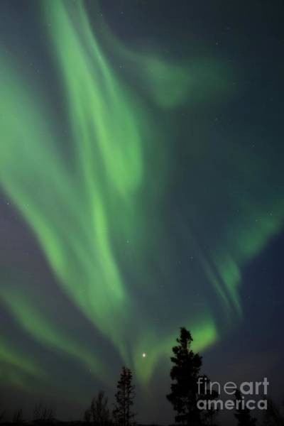 Polar Photograph - chasing lights II natural by Priska Wettstein