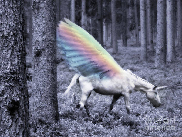 Mixed Media - Chasing The Unicorn by Emanuela Carratoni