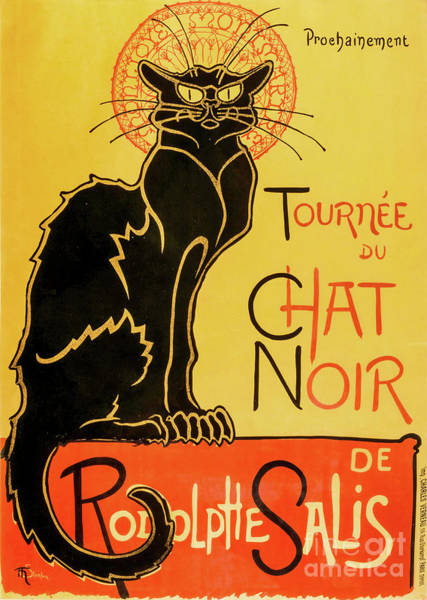 Wall Art - Painting - Chat Noir by Delphimages Photo Creations