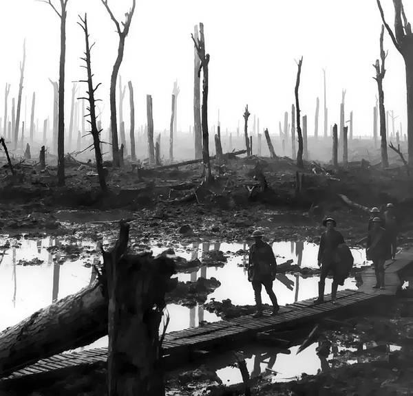 Ww1 Digital Art - Chateau Wood France World War One  1917 by Daniel Hagerman