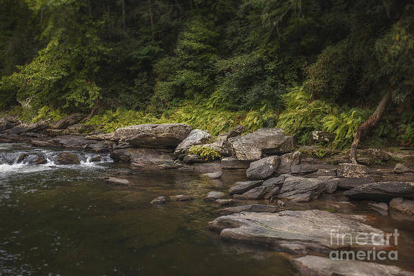 Photograph - Chattooga River 2 by Tim Wemple