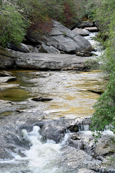 Photograph - Chattooga River In Sc by Bruce Gourley