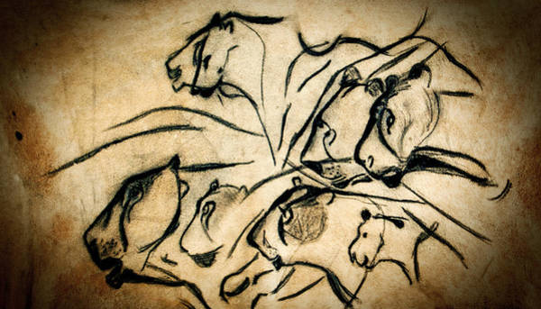 Bison Photograph - Chauvet Cave Lions by Weston Westmoreland