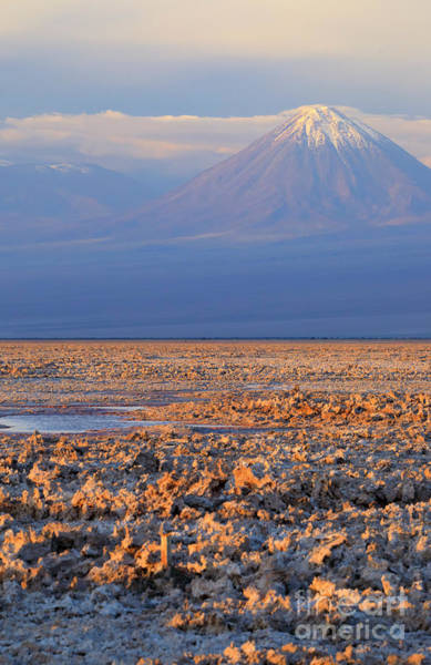 Salar De Atacama Photograph - Chaxa Lagoon At Sunset In The Atacama Desert Chile  by Louise Heusinkveld