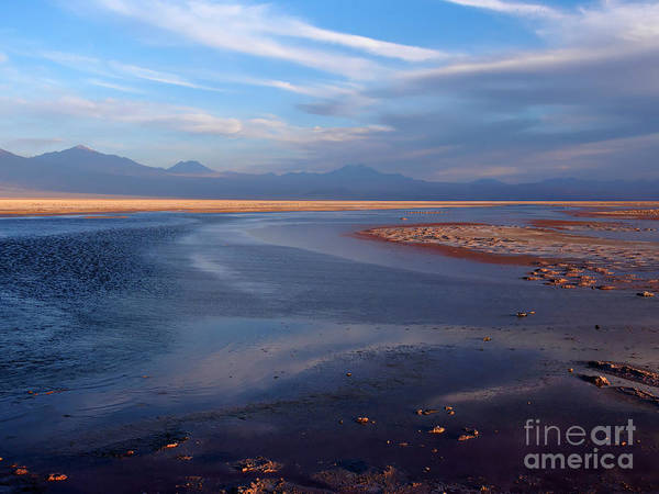 Salar De Atacama Photograph - Chaxa Lagoon Atacama Desert Chile by Louise Heusinkveld