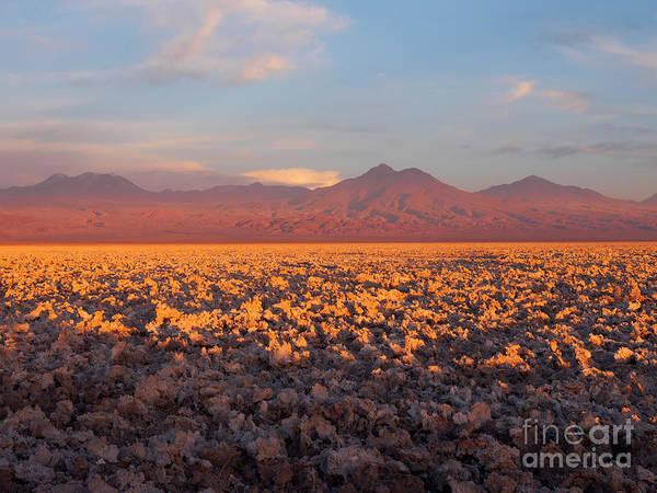 Salar De Atacama Photograph - Chaxa Lagoon In The Atacama Desert Chile, At Sunset by Louise Heusinkveld