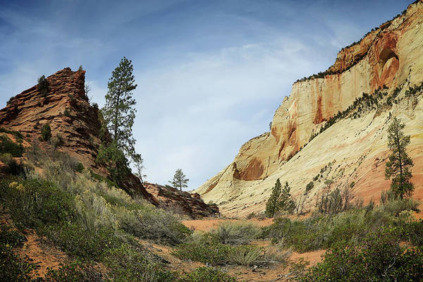 Photograph - Checkerboard Mesa by Sue Collura
