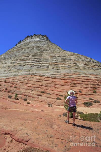Wall Art - Photograph - Checkerboard Mesa Zion National Park by Edward Fielding