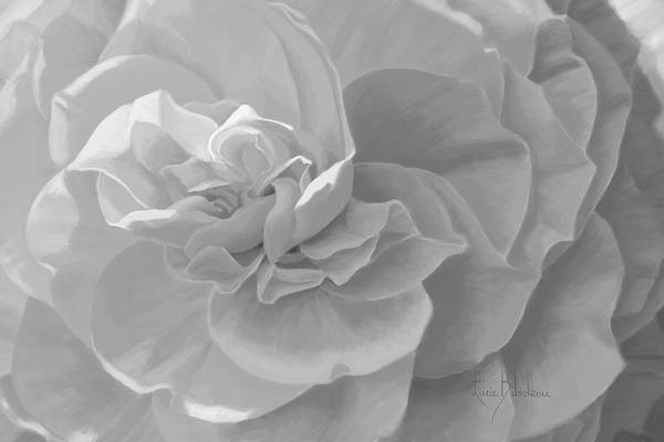 Botanic Painting - Cheerful - Black And White by Lucie Bilodeau
