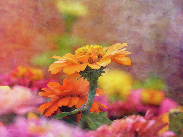 Cheerful Shades Of Optimism 1311 Idp_2 Art Print