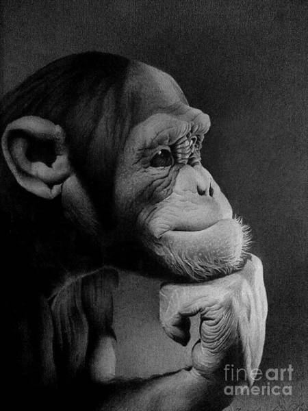 Black And White Nature Drawing - The Thinker by Miro Gradinscak
