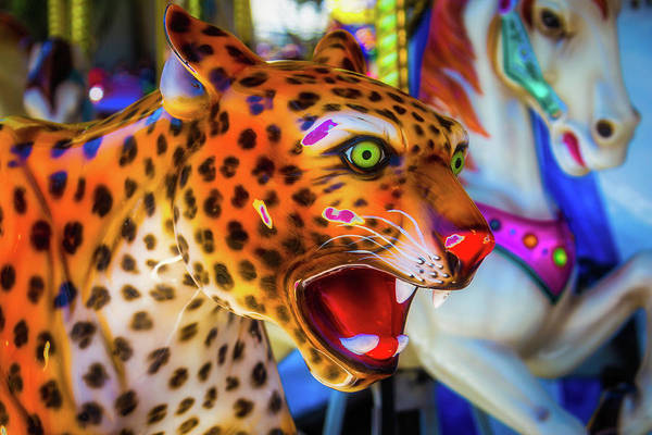 Photograph - Cheetah Ride by Garry Gay