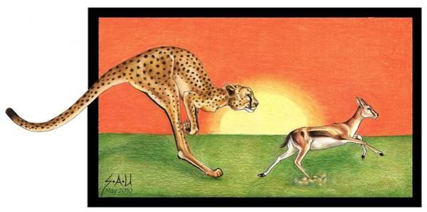 Kangaroo Drawing - Cheetahroo On The Hunt by Sheryl Unwin