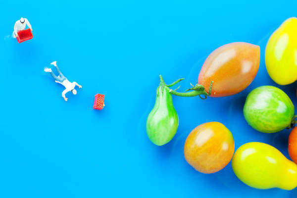 Wall Art - Painting - Chef Tumbled In Front Of Colorful Tomatoes II Little People On Food by Paul Ge