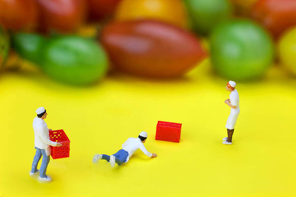 Wall Art - Painting - Chef Tumbled In Front Of Colorful Tomatoes Little People On Food by Paul Ge
