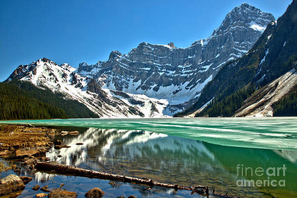 Photograph - Chephren Lake Reflections by Adam Jewell