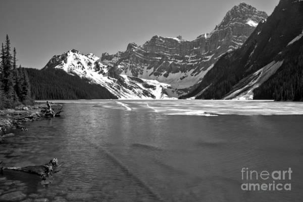 Photograph - Chephren Lake Shoreline Black And White by Adam Jewell