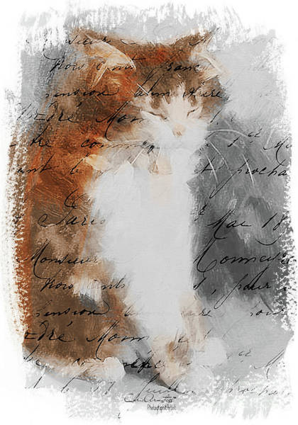 Painting - Cher Chat ... by Chris Armytage
