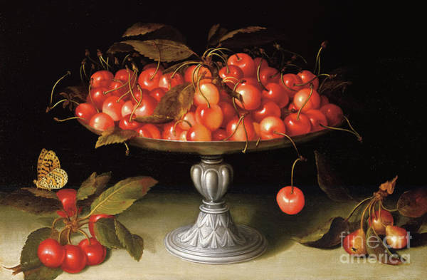 Wall Art - Painting - Cherries In A Silver Compote With Crabapples On A Stone Ledge And A Fritillary Butterfly by Fede Galizia