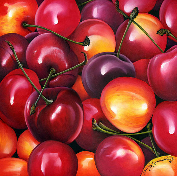 Wall Art - Photograph - Cherries by MGL Meiklejohn Graphics Licensing
