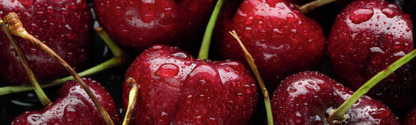 Wall Art - Photograph - Cherries by Steve Gadomski