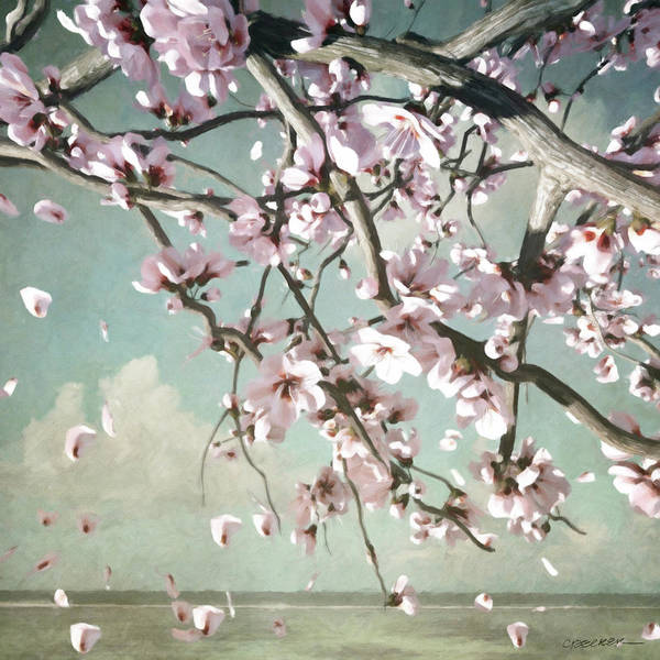 Flowering Trees Digital Art - Cherry Blossom by Cynthia Decker