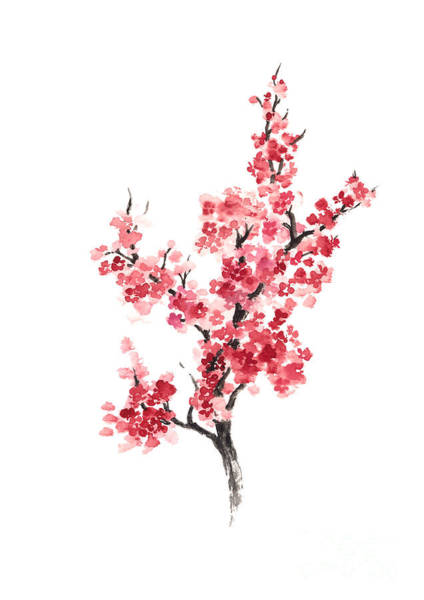 Cherry Blossom Japanese Flowers Poster Art Print